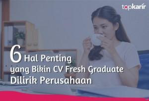 6 Hal Penting yang Bikin CV Fresh Graduate Dilirik Perusahaan   TopKarir.com